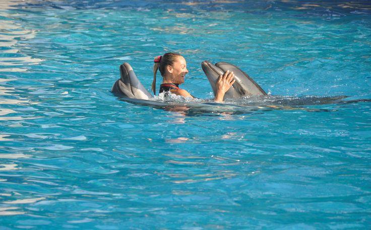Dolphin Therapy Land Turkey- Antalya-Belek