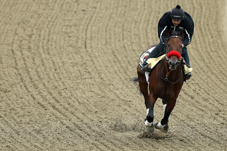 Preakness 2016: Updated Friday Odds and Will Rain Stop  Nyquist? - Forbes 5/21/16