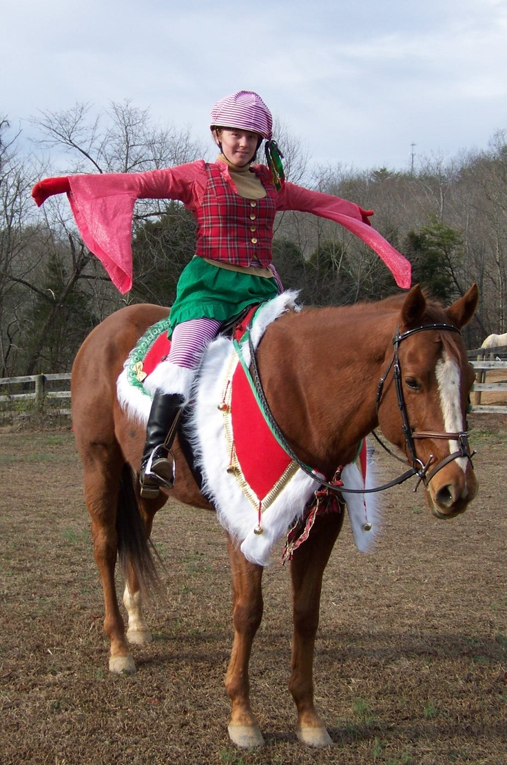 This Is Me And My 7yr Old Ottb Shining Star In Our Christmas