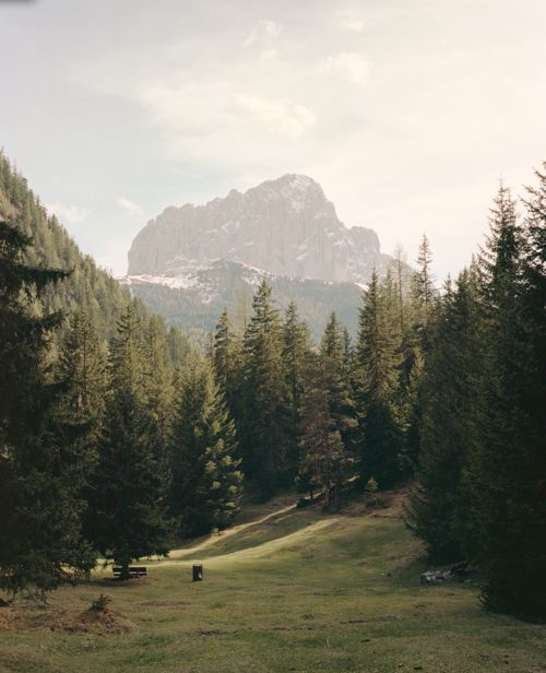 Tumblr_m4qt2q44cM1qe0lqqo1_500: Forests, South Tyrol, Christian, Dreams, The Edge, Happy Places, The Great Outdoor, Travel, Photo
