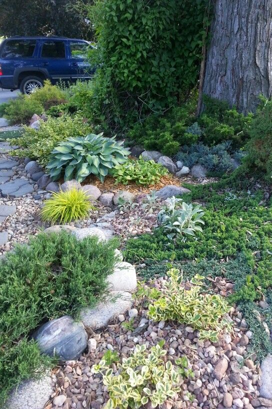 best 25 no grass landscaping ideas on pinterest no grass yard river rock path and patio. Black Bedroom Furniture Sets. Home Design Ideas