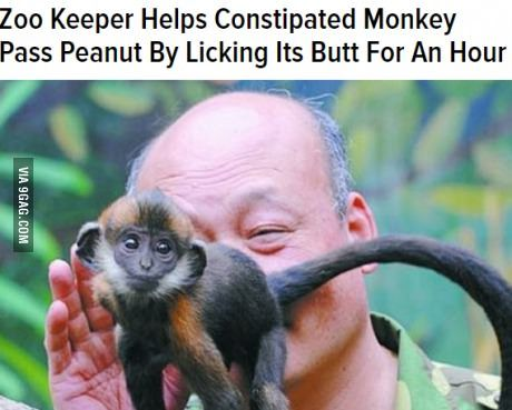 And the world's funniest headline and accompanying picture award goes to...