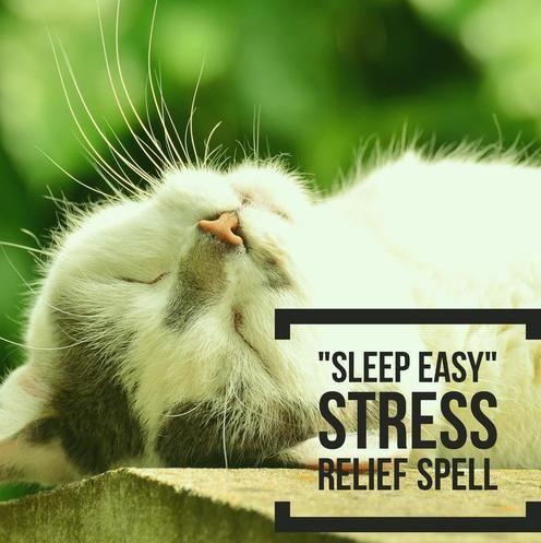 The 25+ best Easy spells ideas on Pinterest Magick spells - spell resume