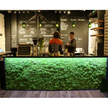 KITCHEN BAR IDEA   Interior Preserved Bun Moss Bar - The three types of preserved moss we use are Pole or Bun Moss, Flat Moss or Reindeer moss. They are all sustainably grown and preserved using natural glycerine and food dyes
