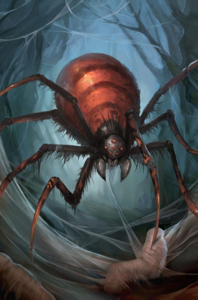 Spider illustration  art, Doomweaver   Spider zix72 by