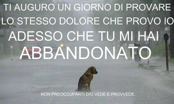 """Gatti & Cani di Casa: Meno cani abbandonati: """"Italiani più responsabili""""..."""