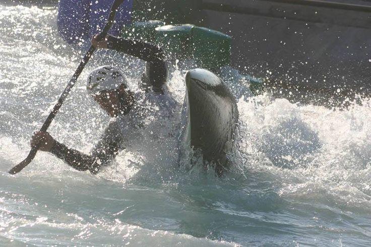 L'essenza dello spirito dell'uomo sta nelle nuove esperienze.     - Into The wild -  #rafting #canoa #hydrospeed #valtellina #sport