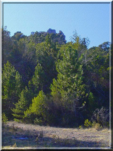 Le château Gardois proche de Figanieres est nommé : La Garde. Le courageux qui tente l'ascension (facile) de cette colline boisée comprendra la raison de ce patronyme. une vue incroyable.