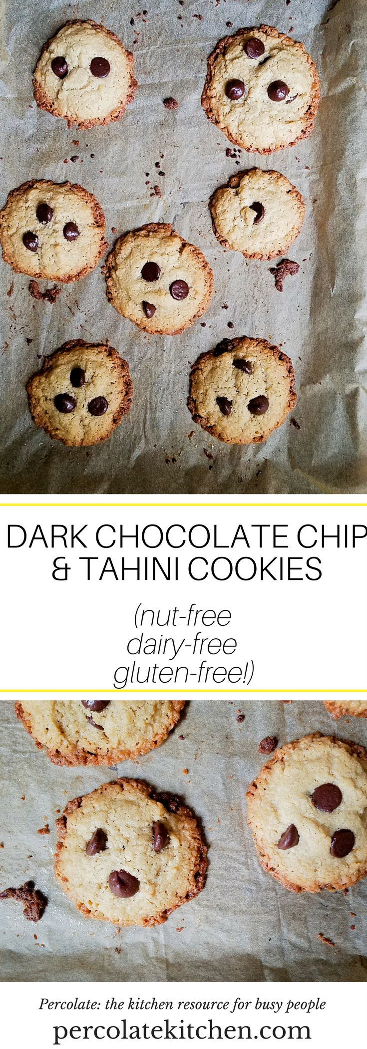This 6-ingredient Dark Chocolate Chip and Tahini Cookie is nut-free, dairy-free, and gluten-free! It's an easy and simple recipe to make and SO tasty!
