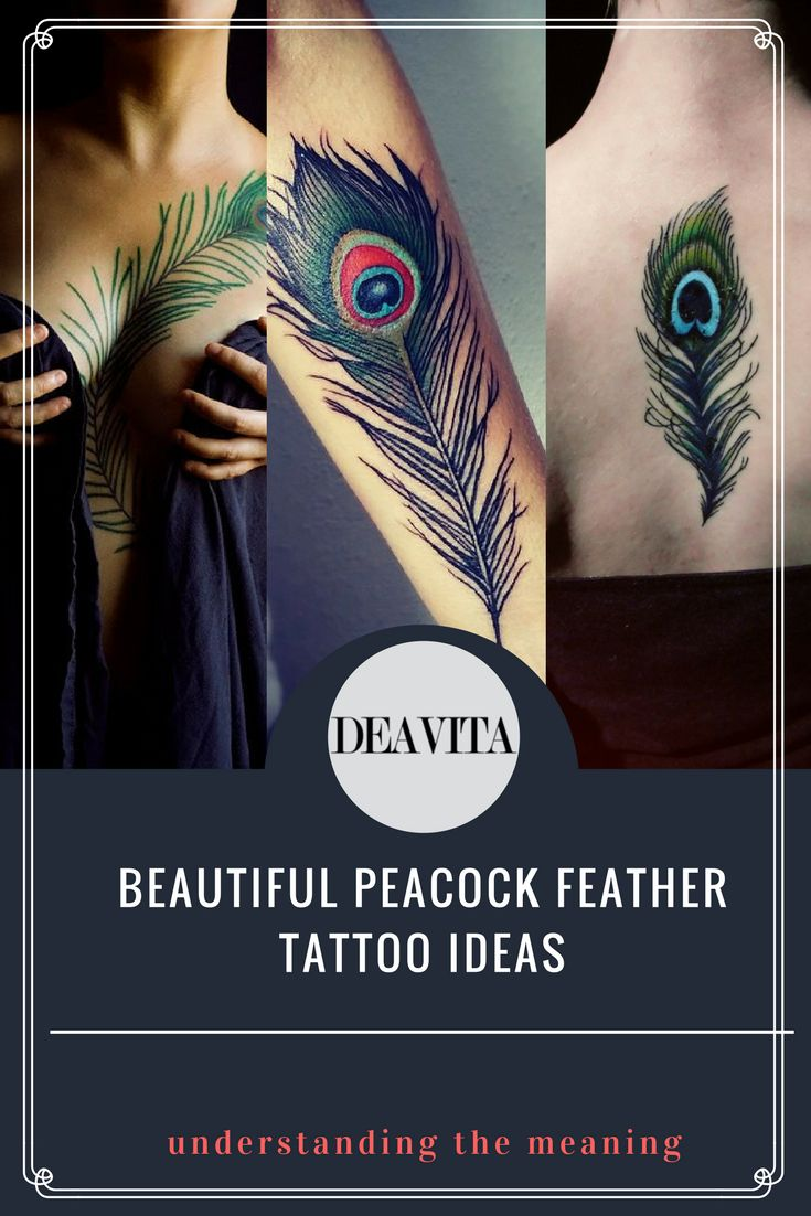 Peacock feather tattoo ideas belong to the larger group of feather tattoos which are widely popular not only for their aesthetic beauty