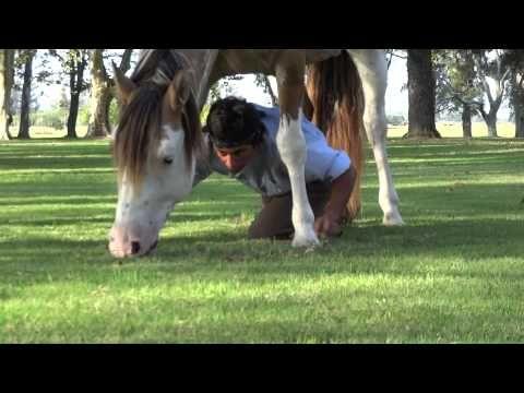 Gaucho Martine Tatta performing with his horse at Estancia La Bamba, Argentina.