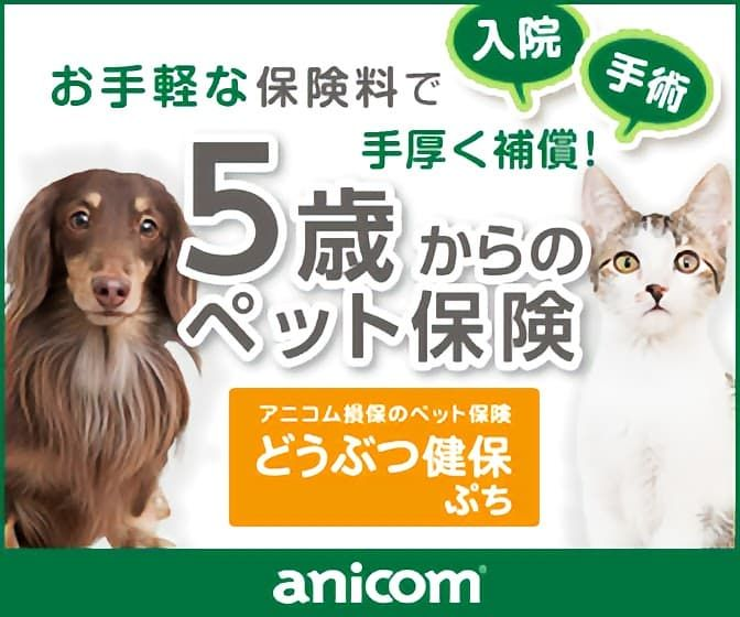 アニコム損保 ペット保険 ペット バナーデザイン