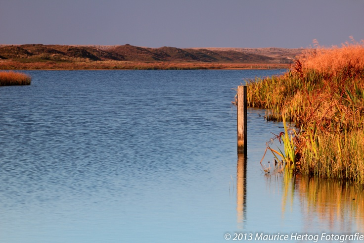 Dune lake, Texel (NL)  Photo © Maurice Hertog Fotografie