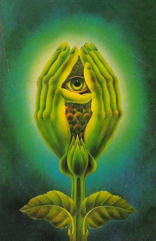 Cover illustration by Alan Aldridge, 1975 Published in 1973, The Secret Life of Plants was written by Peter Tompkins and Christopher Bird.