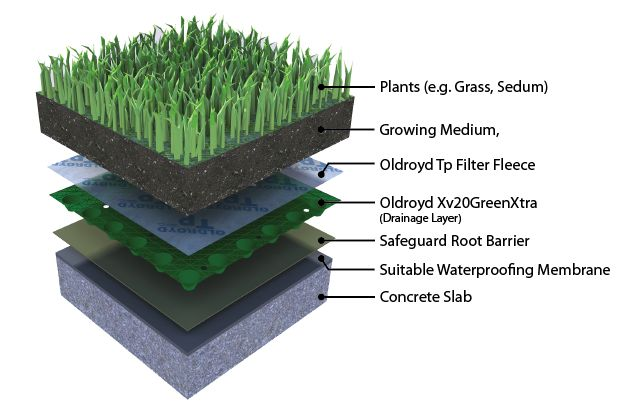 Cutaway Cross Section Flat Green Roof Root Barrier