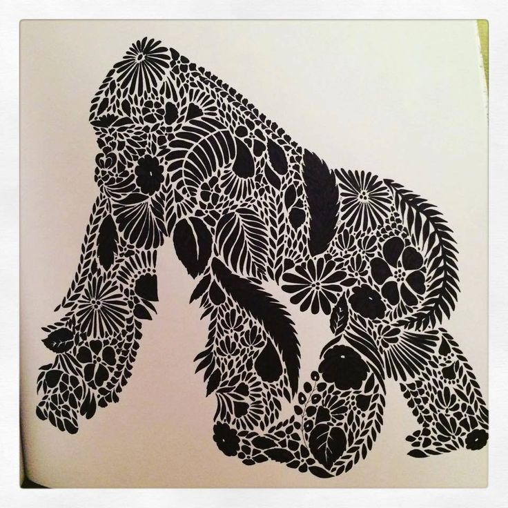 168 Best Images About Millie Marotta Animal Kingdom On