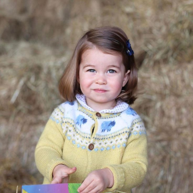 "9,820 Likes, 139 Comments - Catherine Duchess Of Cambridge (@katemidleton) on Instagram: ""A delightful new photo of little Princess Charlotte has been revealed to mark her second birthday…"""