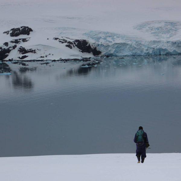 Exploreaza Antarctica Vei avea parte de o #experienta de neuitat care va va duce la cel mai indepartat punct de pe Pamant. Cel mai rece, mai inalt, mai uscat si mai putin populat continent. A fost acoperit complet de gheta, care nu doar l-a modelat ci si influentat evolutia. Este o importanta #rezervatie a biosferei. Contactati-ne pentru #vacante personalizate ! http://bit.ly/2i53WBY