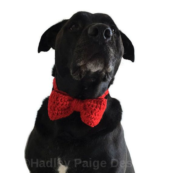 I N F O:  Hand crochet bow tie for your fur baby! Unique, beautiful photography prop/ Holiday gift!  ------------ C O L O R S:  These are made to order so you choose any color (refer to last image for current color swatch & select coordinating number from drop down menu.