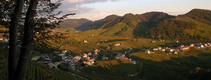 La strada del Prosecco svela i tesori di un territorio tutto da scoprire...  The wine road of #Prosecco gives breathtaking #treasures to discover... #castle #Veneto #Italy #castello