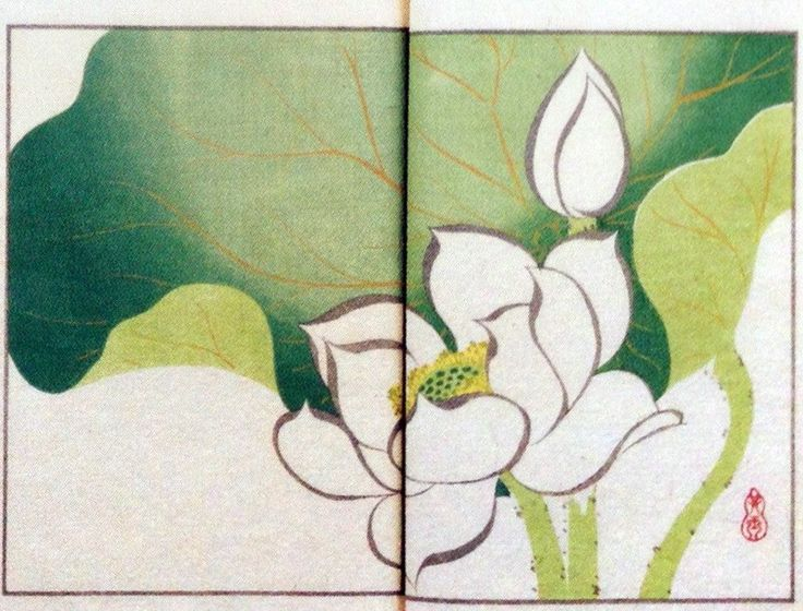 Title:其玉画譜 10 白蓮 Book of pictures 10 White lotus Artist:中野其玉 Nakano Kigyoku