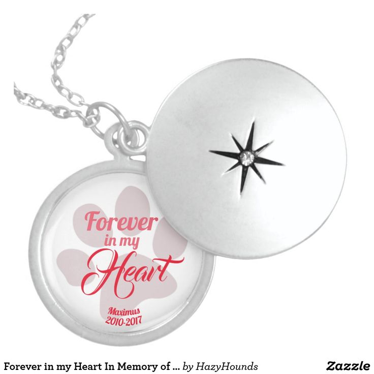 Forever in my Heart In Memory of Lost Pet Sterling Silver Necklace