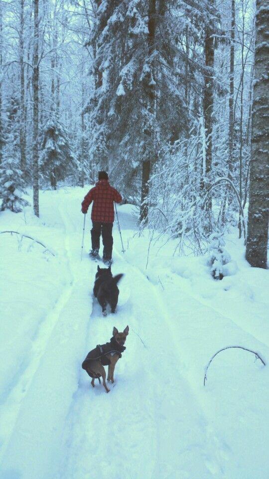 Metsässä lumikenkäkävelyllä