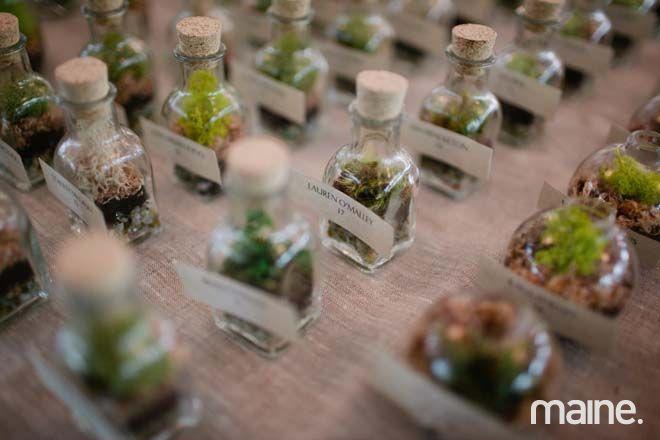 Little handmade terrariums as wedding gifts.