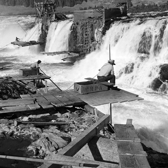 17 best images about portland 1950 1959 on pinterest for Oregon fishing season
