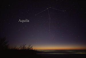 Aquila (constelación) - Wikipedia, la enciclopedia libre
