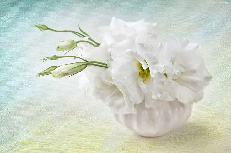 Malarstwo, Obraz, Bukiet, Kwiatów, Eustoma