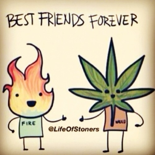 Stoner Friendship Quotes: #BestFriends#Stoners#fire#weed