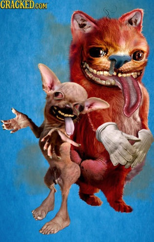 Ren and Stimpy would be horrifying in real life.: Clean, Stimpy