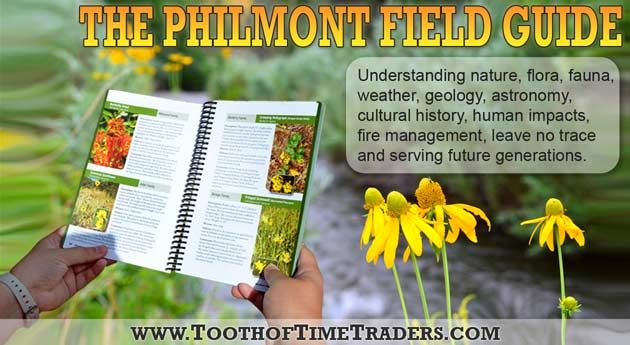 philmont women Welcome to the philmont ranger staff  a philmont summer and what you give to the young men and women around the world will endure forever.