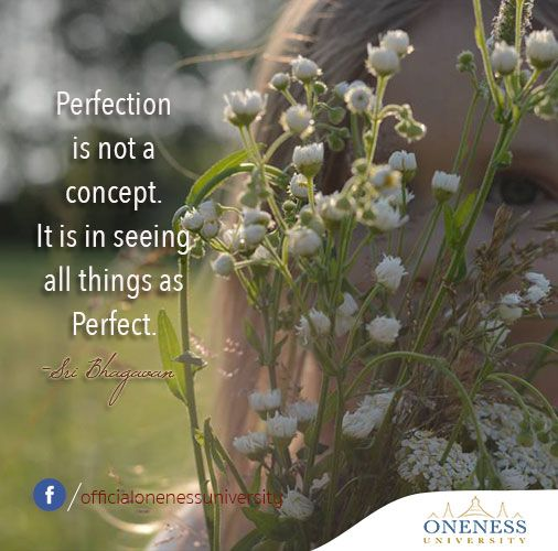 Perfection is not a concept.  It is in seeing all things as perfect. -Sri Bhagavan