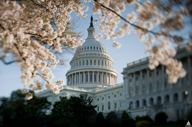 NSA reform falters as House passes gutted USA Freedom Act