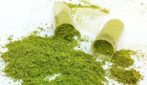 Moringa Oleifera proprietà e benefici in capsule e polvere