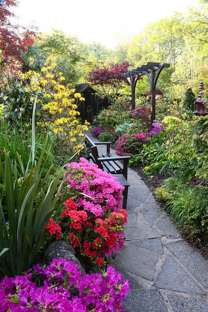 A narrow garden path lined with plants and flowers creates a peaceful place to sit and relax.