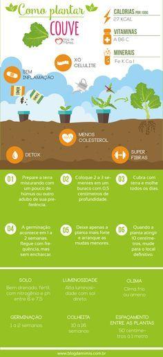 Como plantar couve e                                                                                                                                                                                 Mais