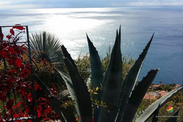 Monesteroli mille gradini verso il blu - Costa di Tramonti - Parco delle Cinque Terre ~ Italy Travel Web