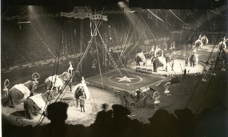 """Ballet of the Elephants"" at Madison Square Garden, 1942"