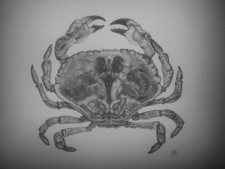Mud Crab stippling.