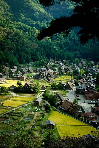 World Heritage - Shirakawa Village, #Japan