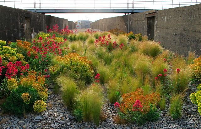 The gardens at the Saint-Nazaire Submarine Base. DR