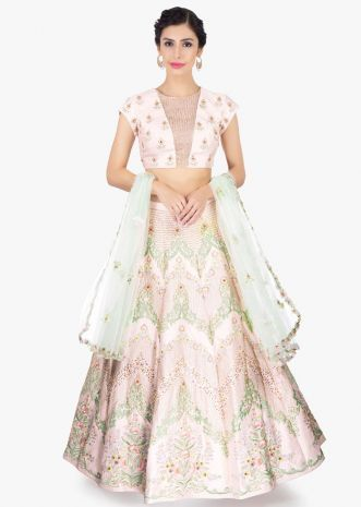 e10a6a70a5 Powder pink raw silk embroidered lehenga set paired with pistachio green  net dupatta | Clothes: Indian in 2019 | Lehenga designs, Blouse designs,  Lehenga