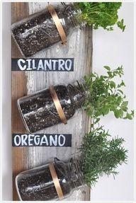 easy organized herbs