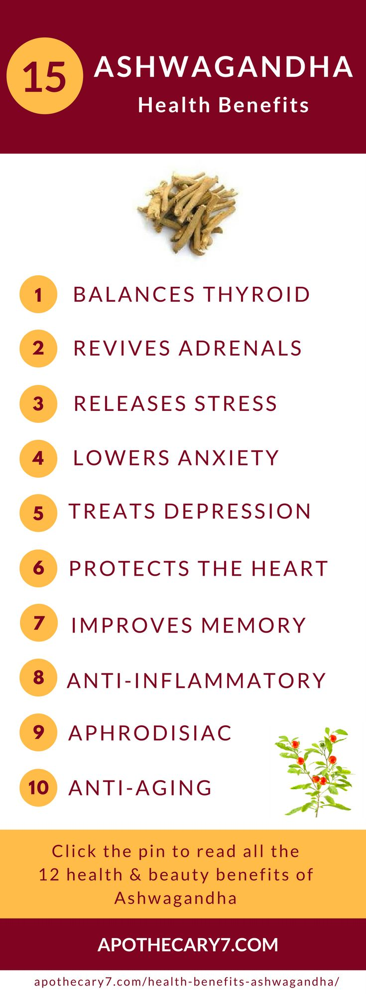 Ashwagandha is known as an Ayurvedic super herb with good reason. In this article you'll learn 15 power Ashwangandha benefits that will rock your world.