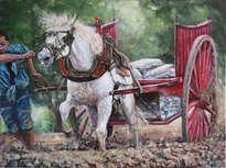 tiro y arrastre.caballo blanco