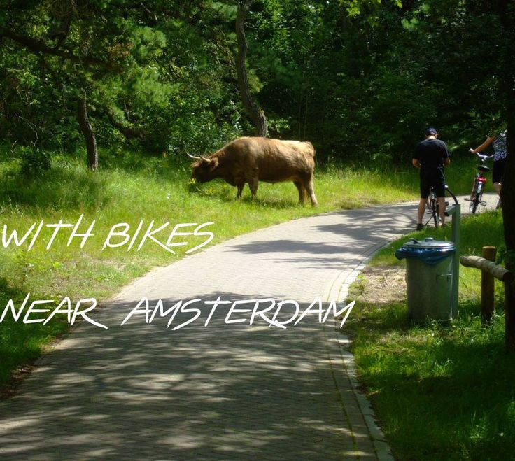I planned my first journey 2007: Two 17-year-olds and two bicycles, we took the train to the coast and enjoyed a camping holiday near Haarlem with many bike tours. Amsterdam included!