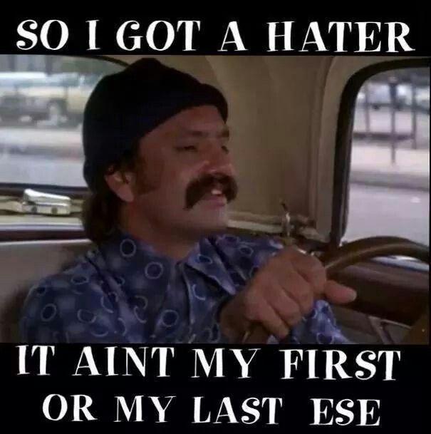 e464e97039a6013f602f1a26235ec5b0 real quotes humor quotes 331 best cheech an chong images on pinterest cheech and chong